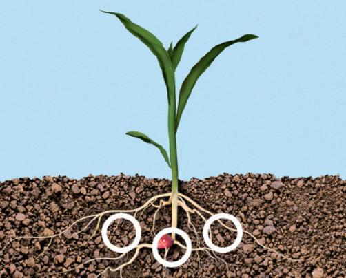 Рішення Precision Planting для внесення рідких добрив