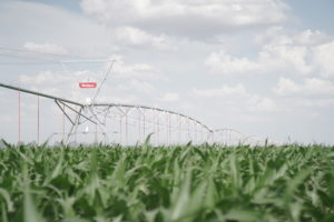 WESTERN IRRIGATION SYSTEMS